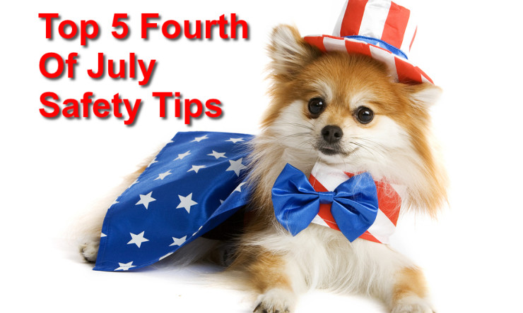 Top 5 Fourth of July Pet Safety Tips