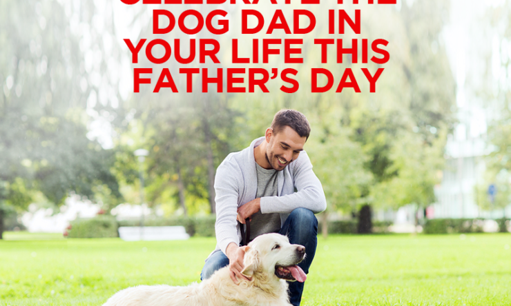 Celebrate the Dog Dad in Your Life this Father's Day