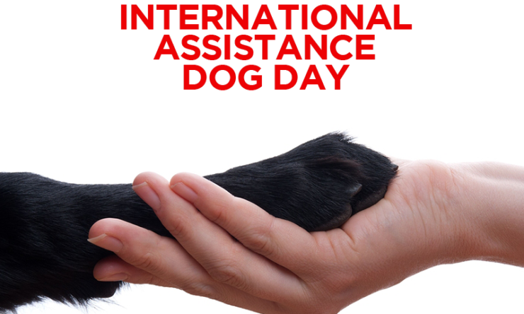 Honoring International Assistance Dog Day