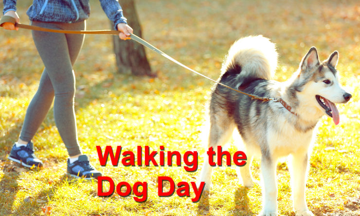 Walking Your Dog Day