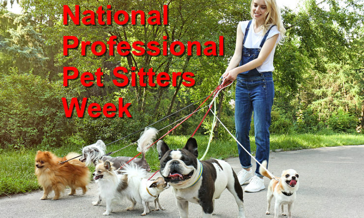 National Professional Pet Sitters Week